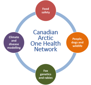 OneHealth Network